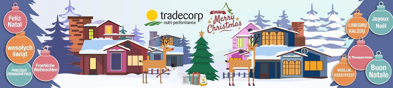 Tradecorp Vous souhaite un Joyeux Noël 2018 !